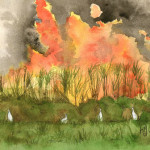 Heather Torres Art | Burning Cane | watercolor painting of sugar cane burning with birds