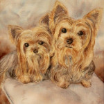 Heather Torres Art | Lola and Zooey | watercolor painting of two dogs, yorkie pet portrait