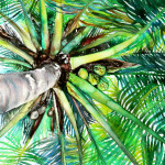 Heather Torres Art | Looking Up | palm tree watercolor, palm tree watercolor painting, watercolor painting, Heather Torres Art