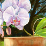 Heather Torres Art | Pink Sunshine | watercolor painting of pink orchid flower