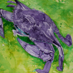 Heather Torres Art | Purple Crab | watercolor painting of purple and green crab