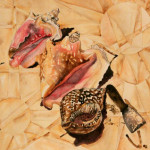 Heather Torres Art | Grand Turk Conch | watercolor painting of conch shells with geometric patterns
