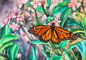 monarch watercolor painting, butterfly painting